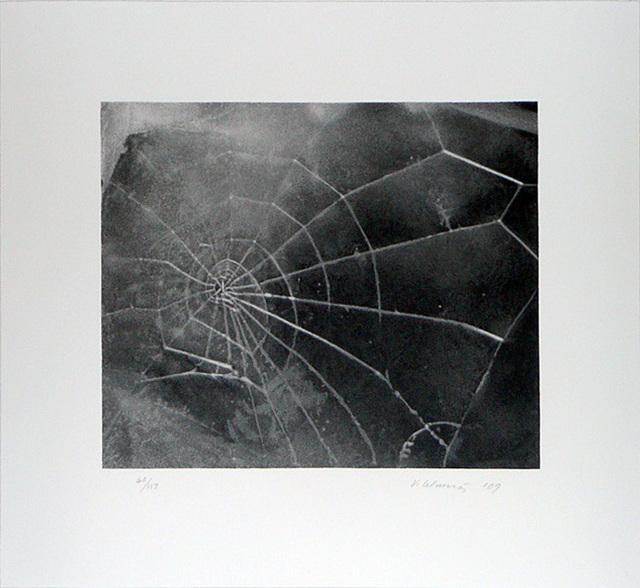 Vija Celmins, 'Spider-Web', 2009, Kenneth A. Friedman & Co.