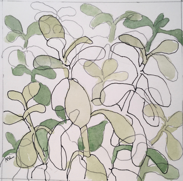 , 'Jade Plant,' 2017, Clyde Hogan Fine Art