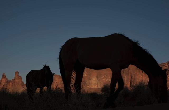 , 'Monument Valley,' 2011, MM Fine Art