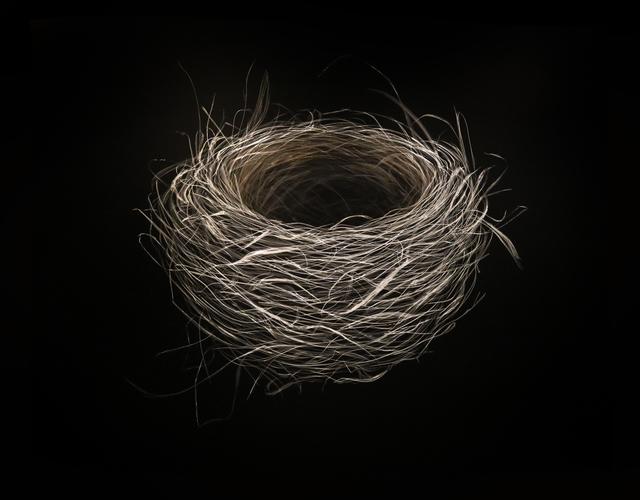 , 'Nest,' 2018, Callan Contemporary