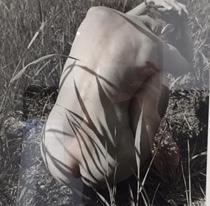 , 'Blanka, Weerribben,' 1981, Kahmann Gallery
