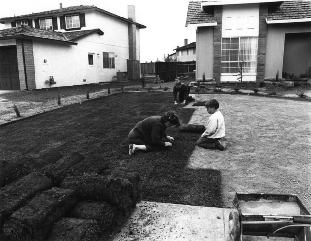 Bill Owens, 'I bought the lawn', 1971, PDNB Gallery