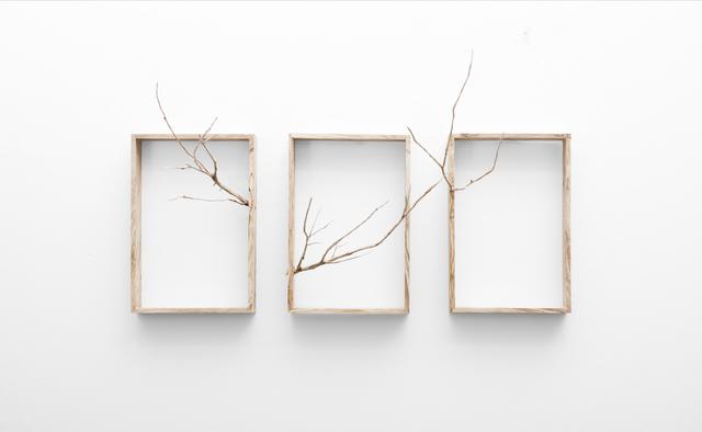, 'Reach (Triptych),' 2017, SMAC