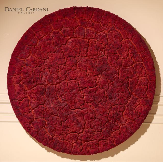 , 'Untitled,' 2011, Galería Daniel Cardani