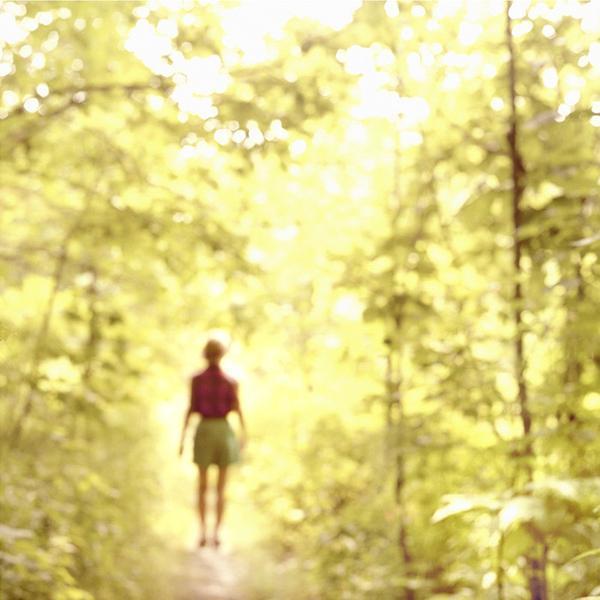 Virginia Mak, 'Hidden Nature 08', Bau-Xi Gallery
