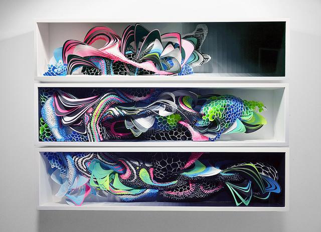 , 'Specimen VI,' 2015, Hashimoto Contemporary