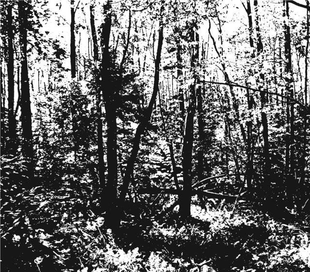 , 'Poetic Landscape I (Robert Frost's Cabin),' 2015, Meessen De Clercq