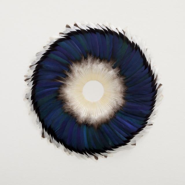 , 'Sepal Speculum,' 2016, Galerie Huit