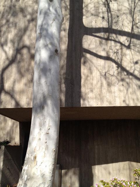 , 'Exposed Concrete,' 2015, Edward Cella Art and Architecture