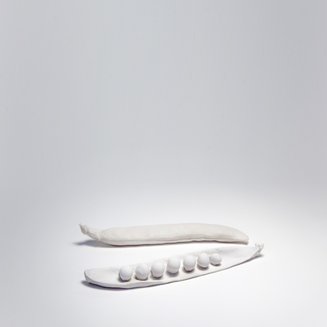 , 'Pysum Sativum,' 2016, Lucia Mendoza