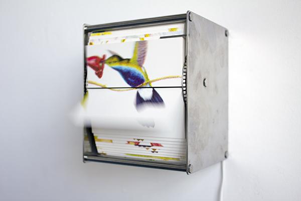 Juan Fontanive, 'Ornithology S.', 2014, Y Gallery