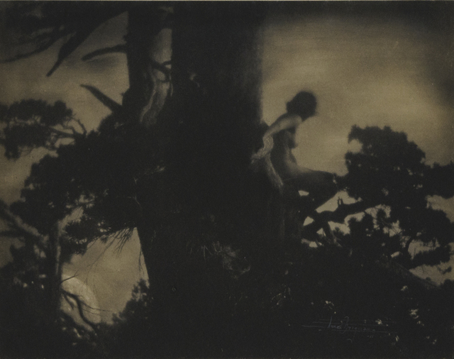 , 'The Pine Sprite,' 1911, Richard Moore Photographs