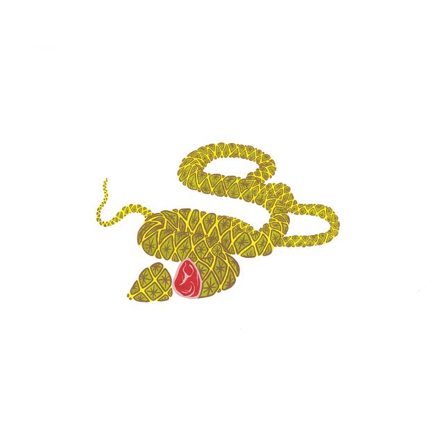 , 'La Mort du Serpent-Jambon déguisé en ananas,' 2017, Art Mûr