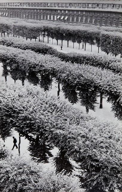 Henri Cartier-Bresson, 'Gardens of the Palais Royal, Paris', 1959, Kopeikin Gallery
