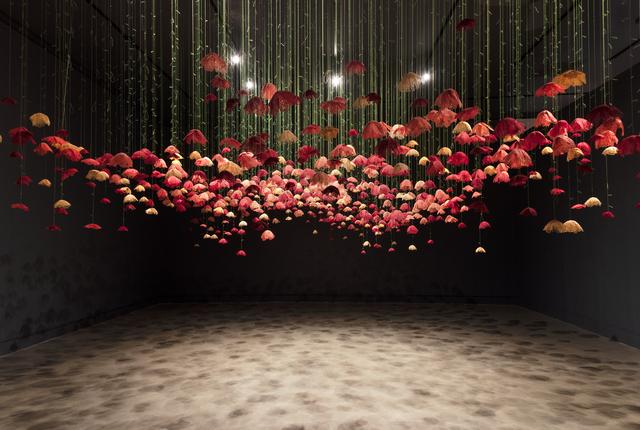 Amanda McCavour, 'Poppies', ca. 2019, Cynthia Corbett Gallery