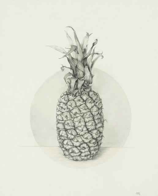 , 'Piña,' 2005, Lucia Mendoza