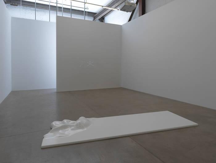 Remote Viewer (installation view, Koenig & Clinton, Brooklyn)