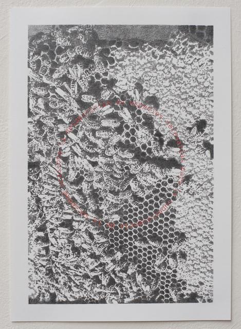 , 'Partículas elementales I,' 2015, Páramo