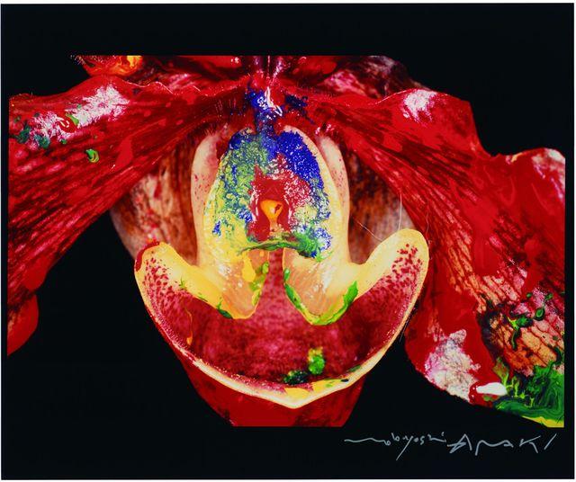 , 'Painting Flower,' 2004, Aki Gallery
