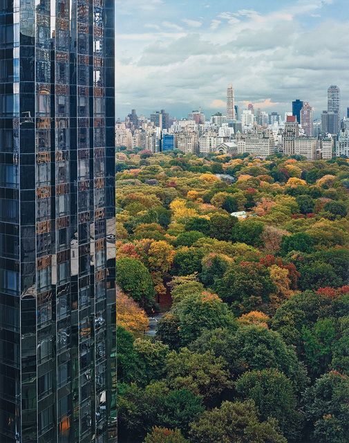 Robert Polidori, 'View of Central Park from the East, New York, NY', 2004, Phillips
