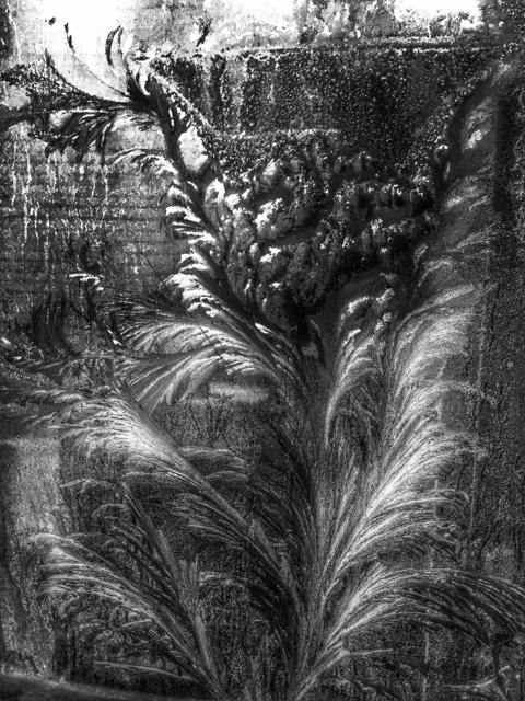 , 'Garden 花園,' 2015, Artrue Gallery