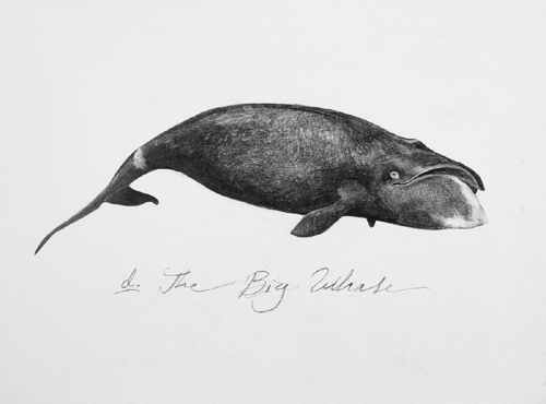 Ethan Murrow, 'At first, She thought They Were Chasing a Giant Baleen', 2007, Winston Wächter Fine Art