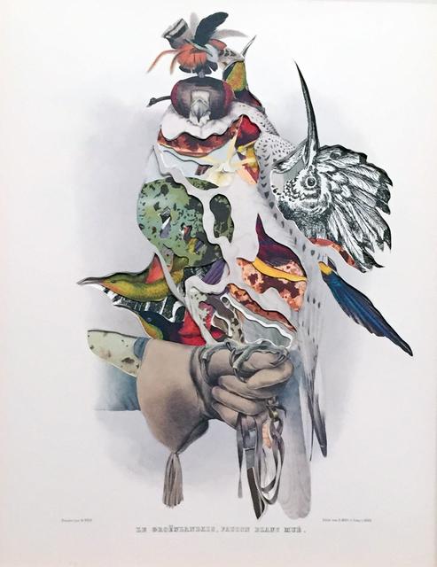 , 'Le Groenlandais, Faucon Blanc Mue,' 2015, Octavia Art Gallery