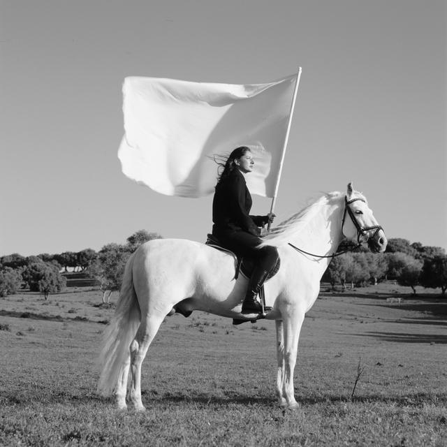 , 'The Hero (II),' 2001, Galerie Krinzinger