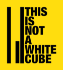 THIS IS NOT A WHITE CUBE