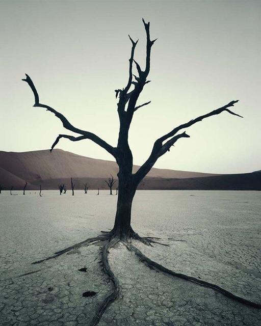 , 'IV 472 - Dead Vlei, Sossusvlei Namibia,' 2011, AbrahamArt