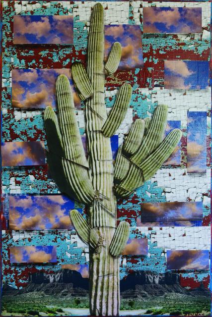 , 'Surreal Cactus Series #9043,' 2017, Xanadu Gallery