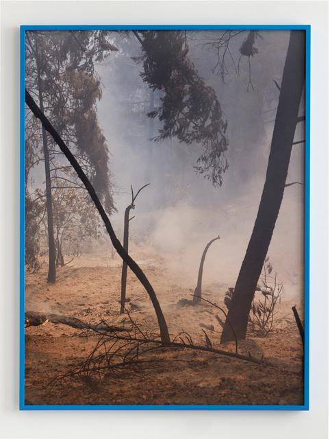 Julius von Bismarck, 'Fire with Fire', 2019, Sies + Höke