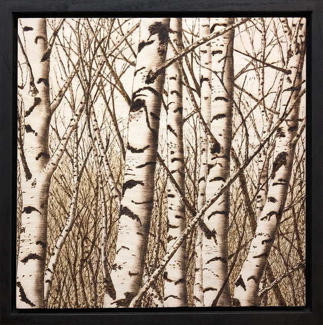 Paul Chojnowski, 'Birches in the Glen', 2019, George Billis Gallery