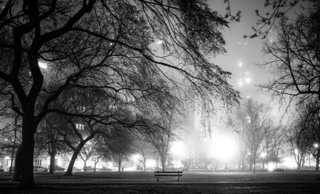 , 'Lincoln Park Fog, Chicago,' 2013, Gallery Victor Armendariz