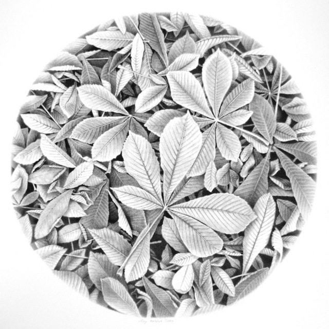 , 'Fallen Chestnut Leaves,' 2013, The Galleries at Salmagundi