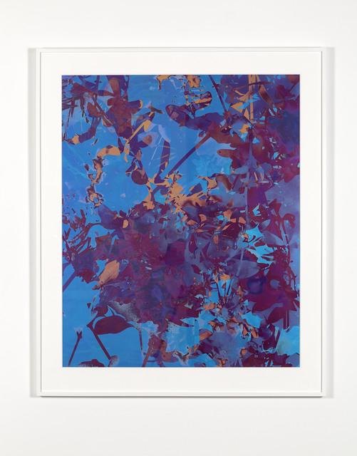 , '#8,' 2016, Marian Goodman Gallery