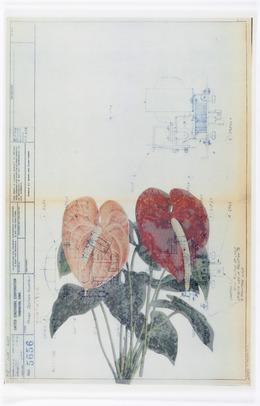 , 'Collage 6,' 2014, Galerie Peter Kilchmann