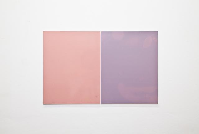 Alex Perweiler, 'Chameleon', 2013, The Still House Group