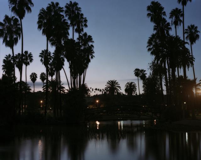 , 'Los Angeles Palms (Echo Park),' 2017, Samuel Maenhoudt Gallery