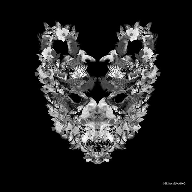 , 'The Wolf,' 2018, MvVO ART