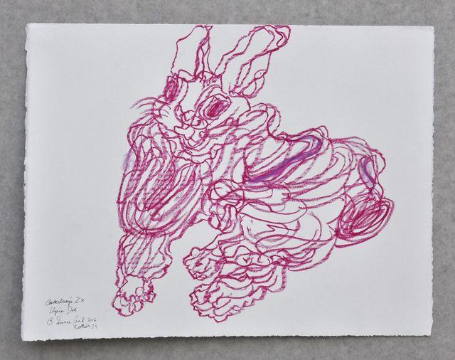, 'Lapin Rouge Canterbury,' 2016, IFAC Arts