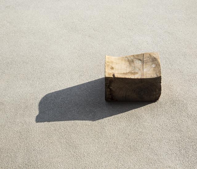 Ilán Rabchinskey, 'Wood #1', 2017, Patricia Conde Galería