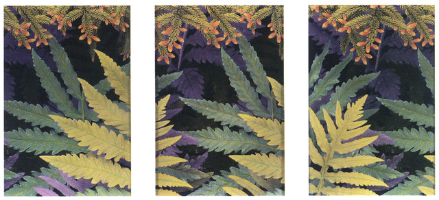 , 'Ferns and Firs,' 2000, Pucker Gallery