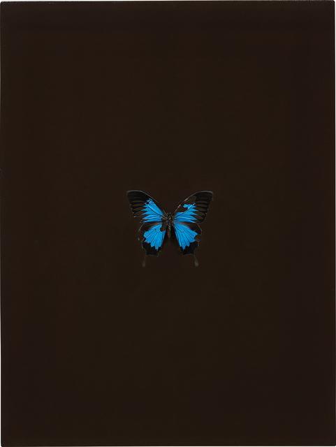 Damien Hirst, 'Love Sick', 2008, Phillips