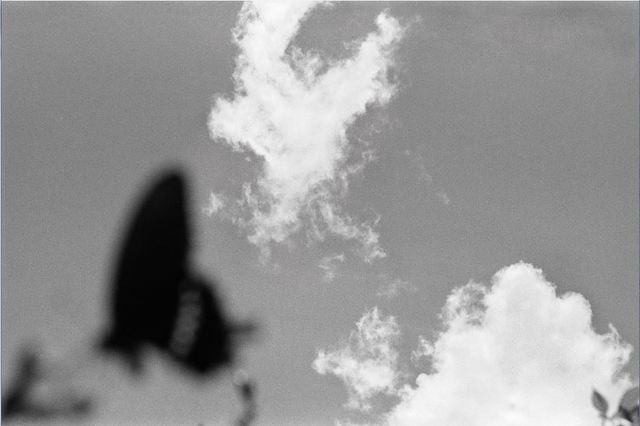 Lee Gap-chul, 'Okinawa', 2007, Photography, Three Shadows +3 Gallery
