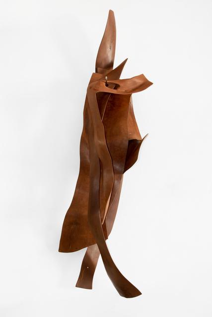 , 'Pele XII,' 2009, Galeria Nara Roesler