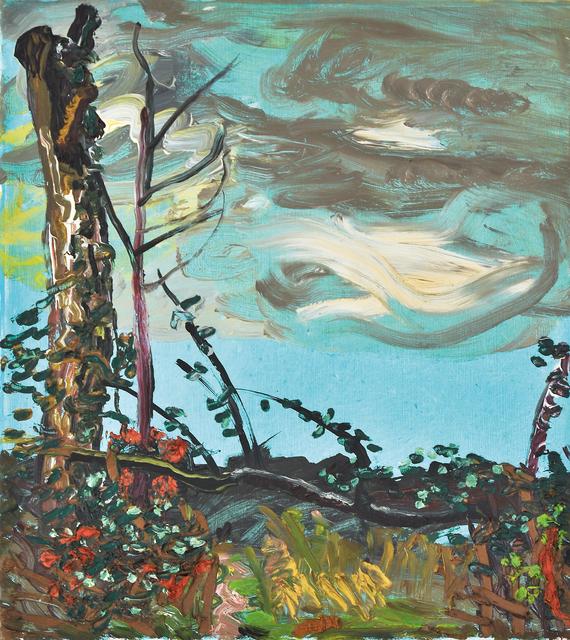 , 'Baumstumpf, Unterholz,' 2011, Flowers
