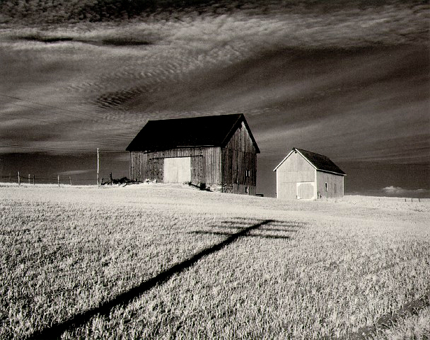 , 'Two Barns and Shadow, in the Vicinity of Naples and Dansville, New York,' 1955, Scheinbaum & Russek Ltd.