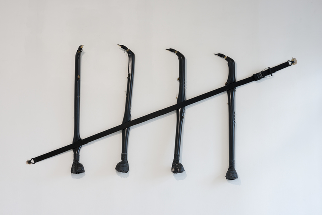 , 'Sounds like occupation,' 2015, Galerija VARTAI