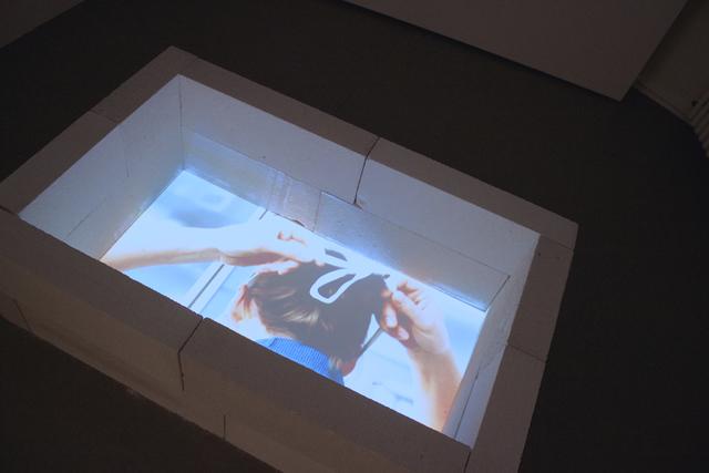 , 'auge (falte) fisch (installation view) ,' 2012, galerie burster